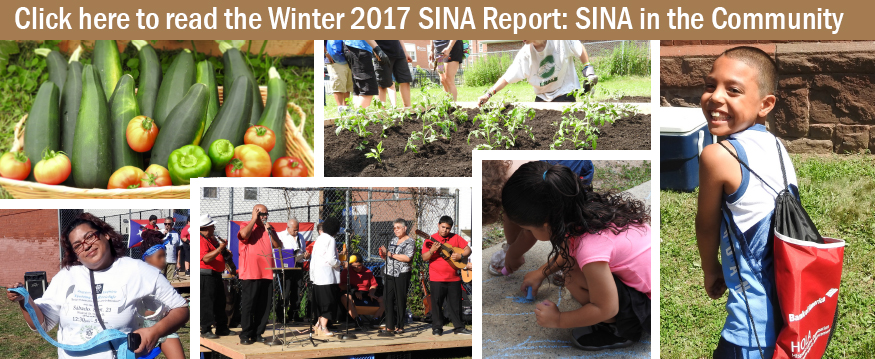 Winter 2017 SINA Report